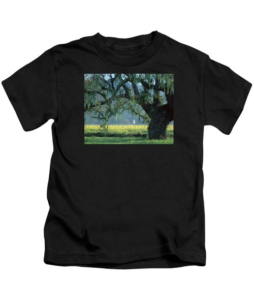 2b6319 Mustard In The Oaks Sonoma Ca Kids T-Shirt