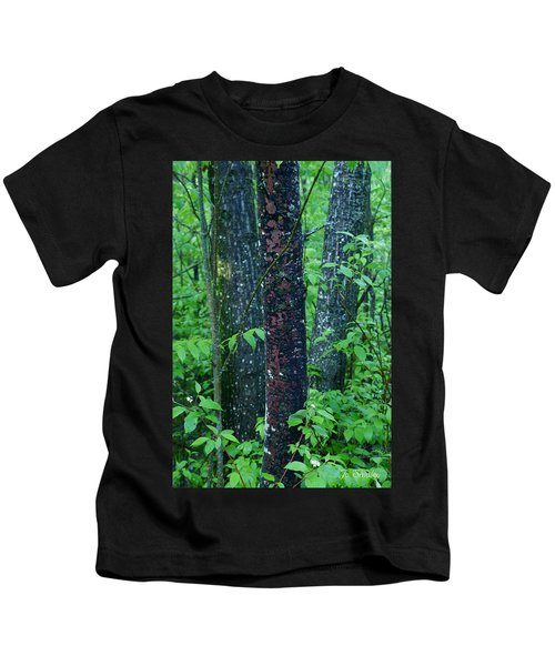 3 Trees Kids T-Shirt
