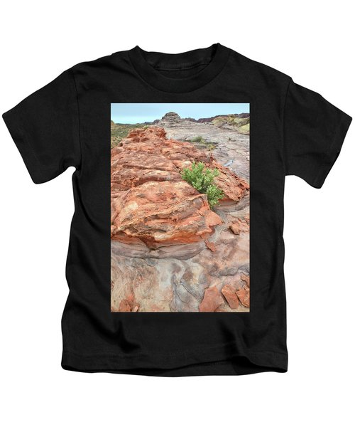 Colorful Sandstone In Valley Of Fire Kids T-Shirt