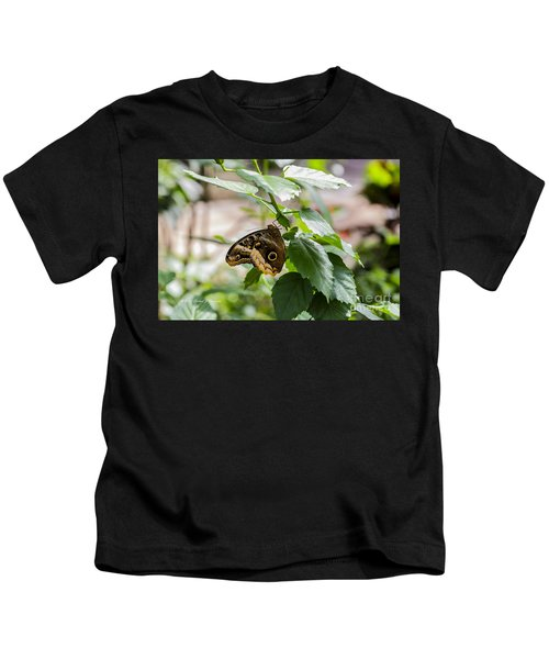 Owl Butterfly Kids T-Shirt