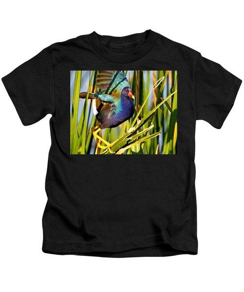 Purple Gallinule Kids T-Shirt