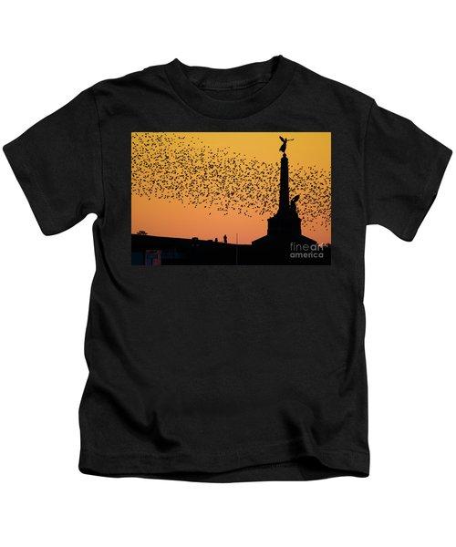 Aberystwyth Starlings Kids T-Shirt