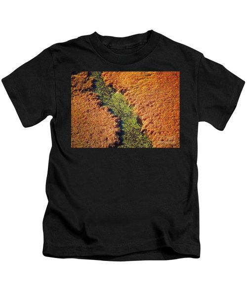 Aerial Farm Stream Lillies  Kids T-Shirt
