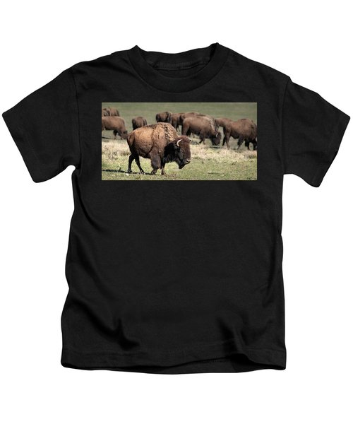 American Bison 5 Kids T-Shirt