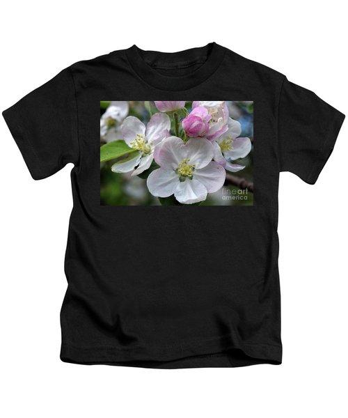Apple Blossoms Closeup Kids T-Shirt
