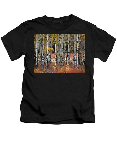 Appreciation II Kids T-Shirt