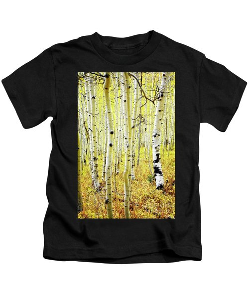 Aspen Grove Kids T-Shirt