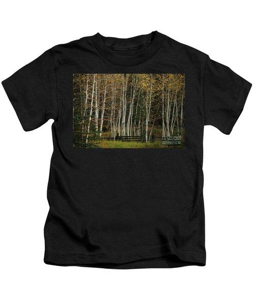 Aspens In The Fall Kids T-Shirt