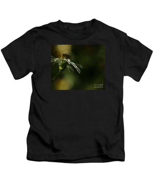 Aster's Peripheral Ray Kids T-Shirt