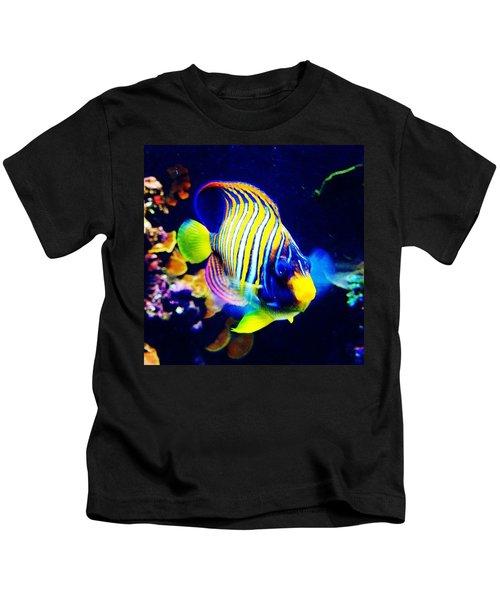 At The Denver Aquarium. #fish #denver Kids T-Shirt