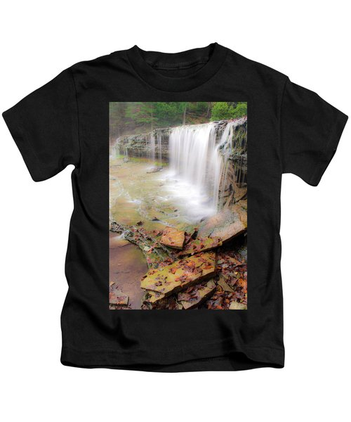 Au Train Falls Kids T-Shirt