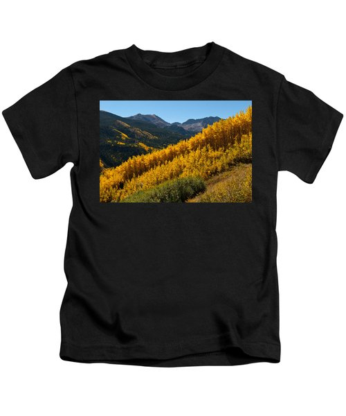 Autumn Aspen Near Castle Creek Kids T-Shirt