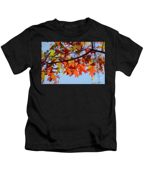 Autumn Leaves 16 Kids T-Shirt