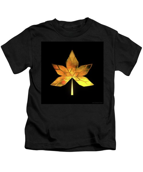 Autumn Leaves - Frame 200 Kids T-Shirt
