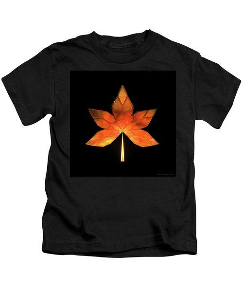 Autumn Leaves - Frame 260 Kids T-Shirt