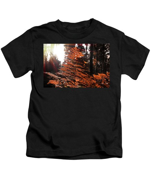 Autumnal Evening Kids T-Shirt