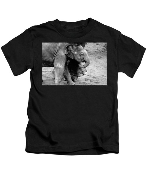 Baby Elephant Security Kids T-Shirt