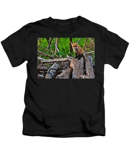 Baby Fox Kids T-Shirt