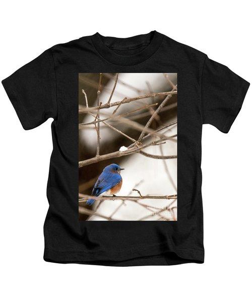 Backyard Bluebird Kids T-Shirt