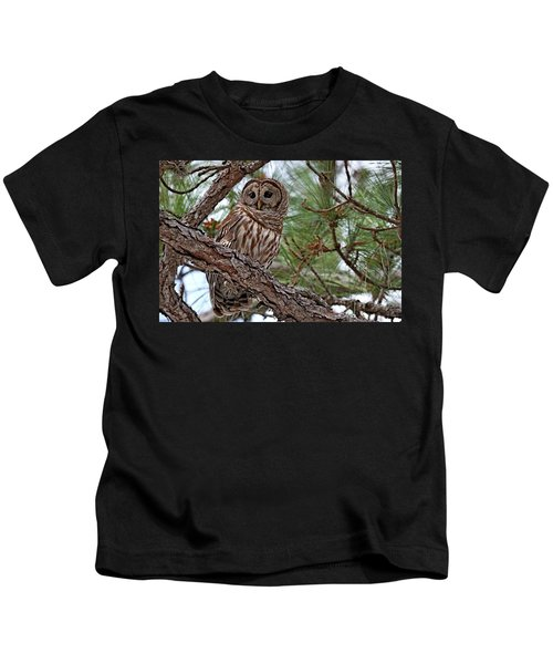 Barred Owl Perched In Tree Kids T-Shirt