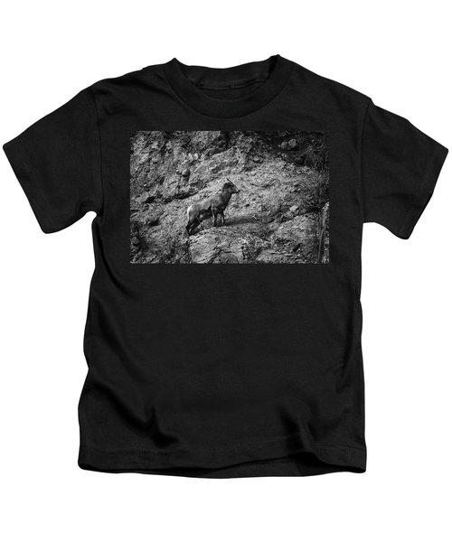 Bighorn Sheep Ewe On Wolf Creek Pass Kids T-Shirt
