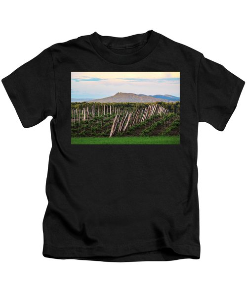 Black Birch Vineyard And Summit House View Kids T-Shirt