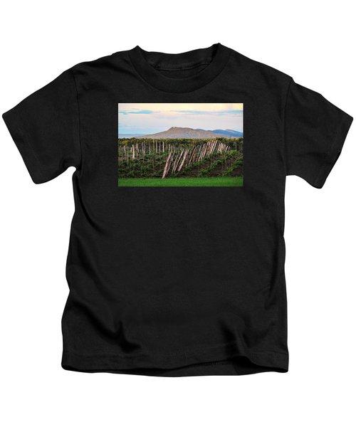 Black Birch Vineyard And Summit House View Kids T-Shirt
