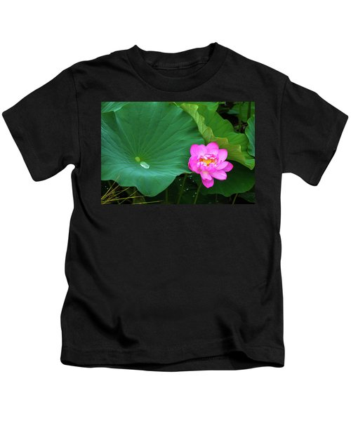 Blooming Pink And Yellow Lotus Lily Kids T-Shirt