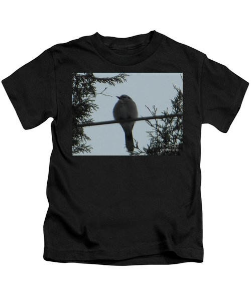 Blue Jay On Wire Kids T-Shirt