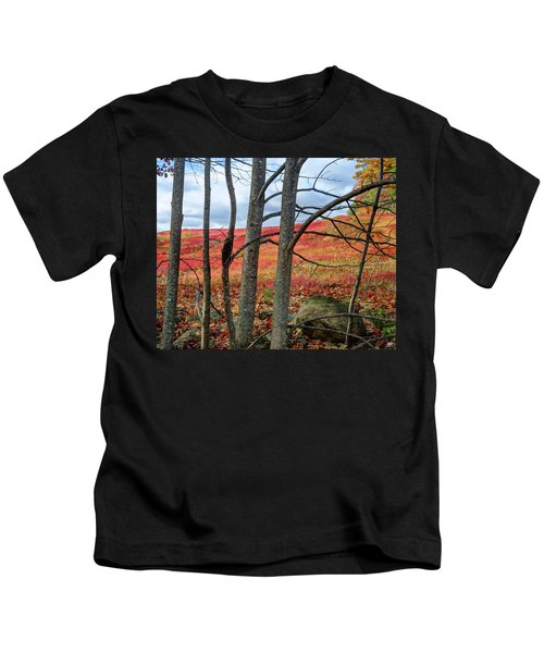 Blueberry Field Through The Wall - Cropped Kids T-Shirt