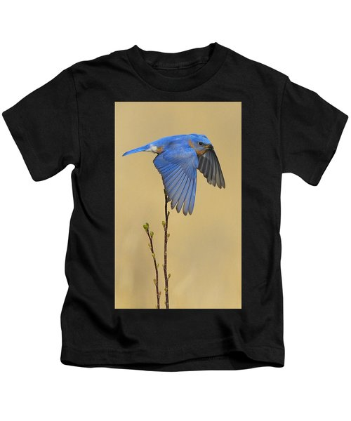 Kids T-Shirt featuring the photograph Bluebird Takes Flight by William Jobes