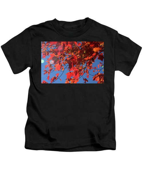 Branches Of Red Maple Leaves On Clear Sky Background Kids T-Shirt
