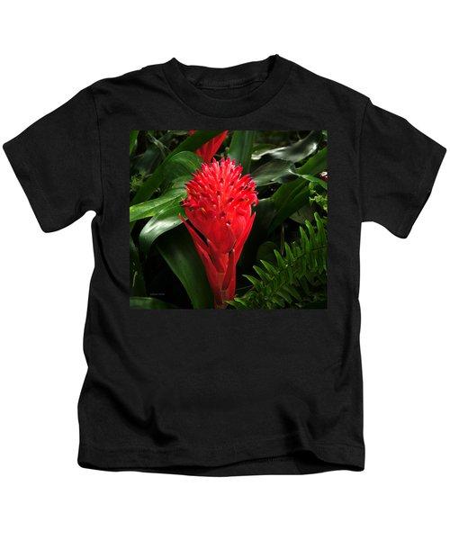 Bromeliad 9-18-15 Kids T-Shirt
