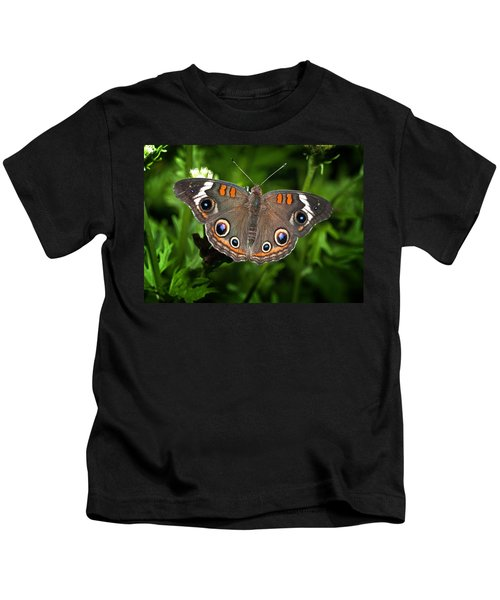 Buckeye Butterfly Kids T-Shirt