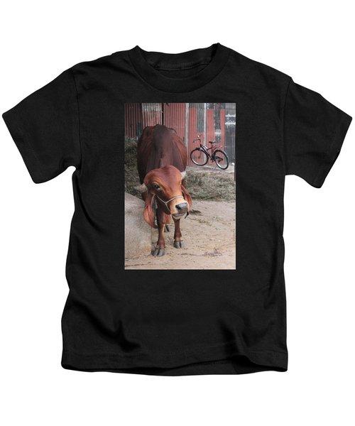 Bull And Bicycle At Sri Vivek's Goshala, Satara Kids T-Shirt