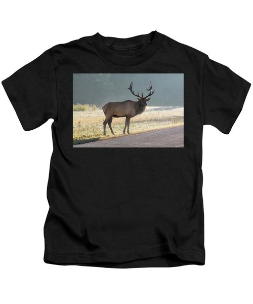 Bull Elk Watching Kids T-Shirt