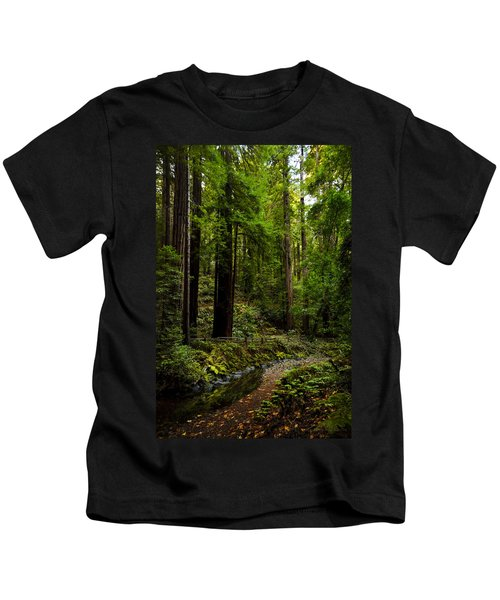 By The Stream In Muir Woods Kids T-Shirt