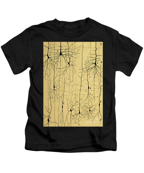 Cajal Drawing Of Microscopic Structure Of The Brain 1904 Kids T-Shirt