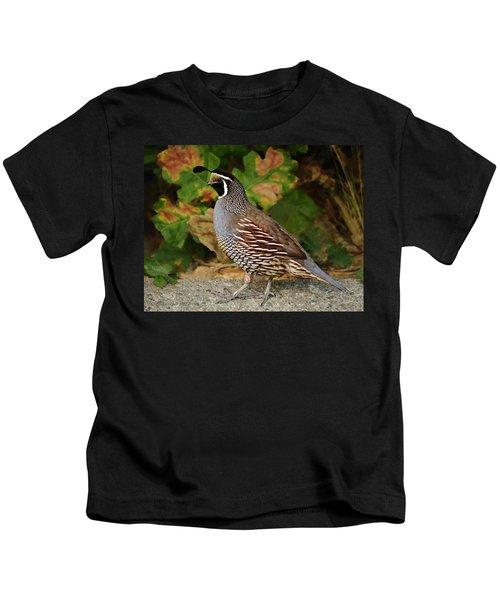 California Quail Rooster Kids T-Shirt