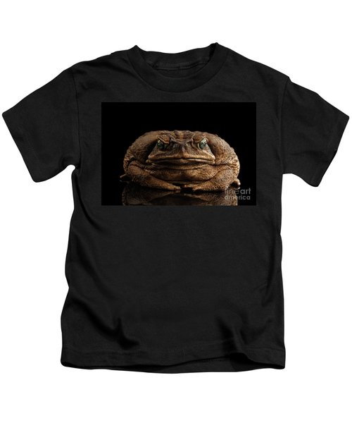 Cane Toad - Bufo Marinus, Giant Neotropical Or Marine Toad Isolated On Black Background, Front View Kids T-Shirt