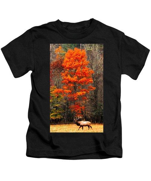 Cataloochee Color Kids T-Shirt