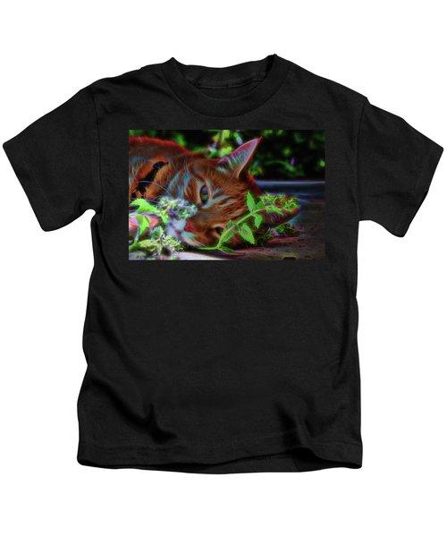 Catnip Chillin Kids T-Shirt