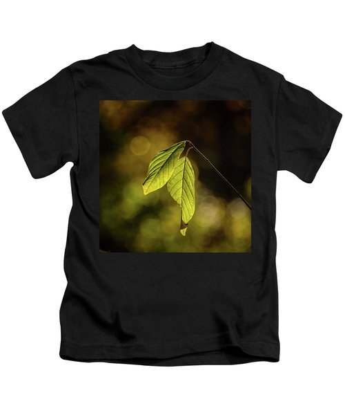 Caught In The Light Kids T-Shirt