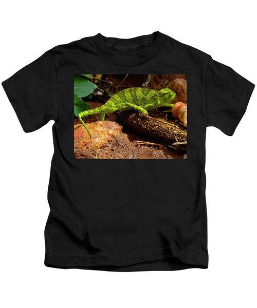 Chameleon Struts His Stuff Kids T-Shirt by Exploramum Exploramum