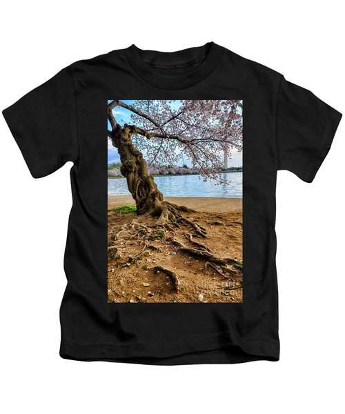 Cherry Tree Roots And Monument Kids T-Shirt