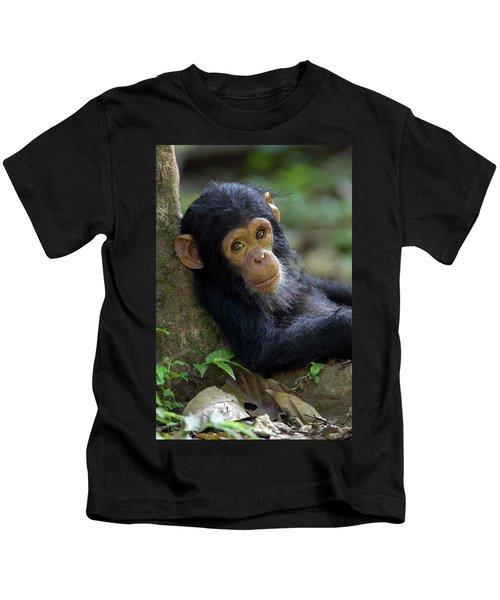 Chimpanzee Pan Troglodytes Baby Leaning Kids T-Shirt
