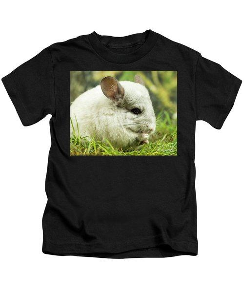 Chinchilla Kids T-Shirt