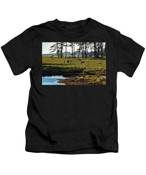 Chincoteague Ponies Kids T-Shirt
