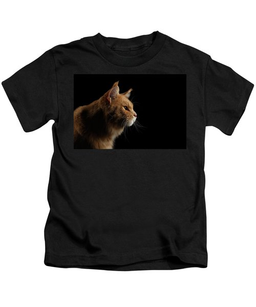 Close-up Portrait Ginger Maine Coon Cat Isolated On Black Background Kids T-Shirt