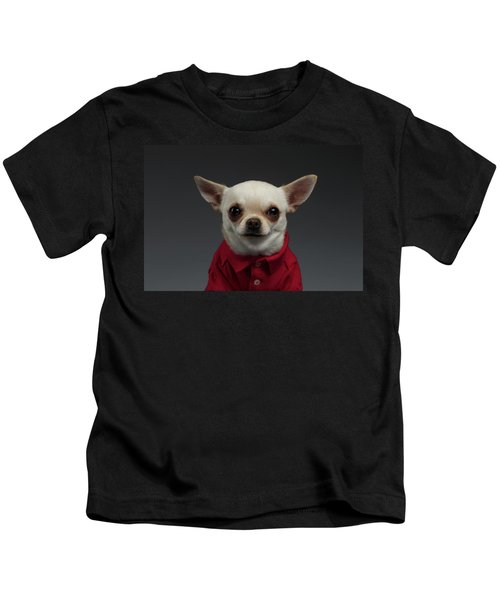 Closeup Portrait Chihuahua Dog In Stylish Clothes. Gray Background Kids T-Shirt